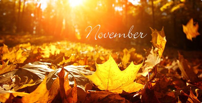 Evenementenprogramma November 2017