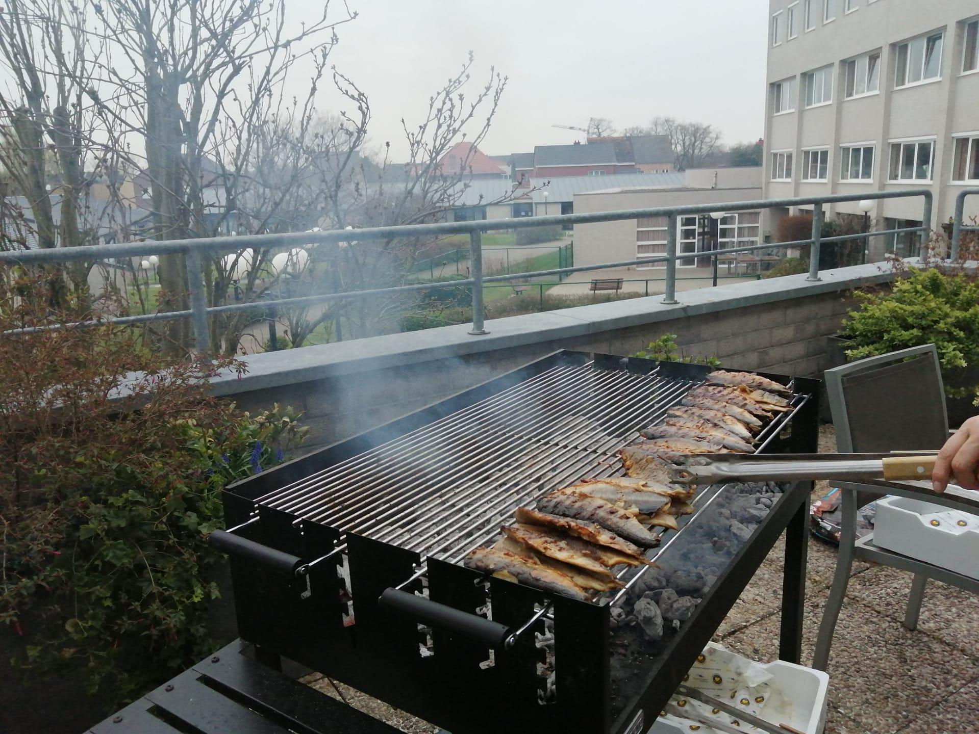 Haringenbak